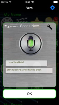 Voice control screenshot